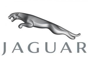 jaguar-300x217